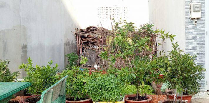 Bán 2 lô đất HXH đường 59 Phạm Văn Chiêu Phường 14 giá 2.4 tỷ (đã bán)