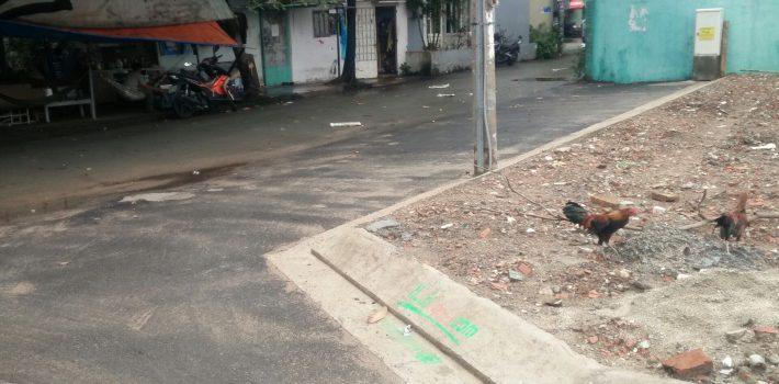Bán 2 lô đất khu đất phân lô Kim Chỉ Nam Phường 6 Gò Vấp cách Nguyễn Oanh khoảng 100m